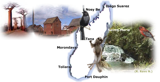 Vacance Madagascar - Circuit Madagascar